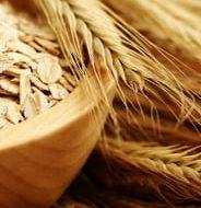Vezelrijk dieet: complete lijst met voeding rijk aan voedingsvezels!