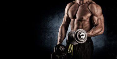 spiermassa opbouwe spieren trainen