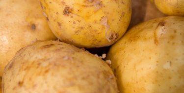 De goede en slechte eigenschappen van de aardappel