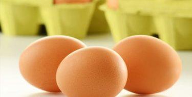 Eiwitten: over dierlijke & plantaardige eiwitten + wat ze doen…