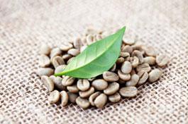 groene-koffie-afvallen-afslankkoffie