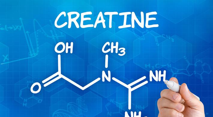 creatine creatinepoeder bestellen