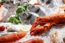 makreel gezond afvallen