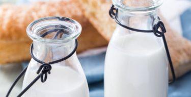 Is zuivel gezond? – Het belang van melk, kaas, yoghurt en kwark in je dieet…