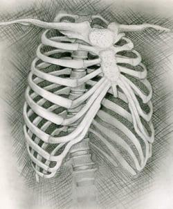 ribben