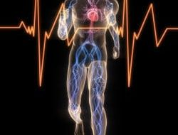 tachycardie snelle hoge hartslag