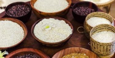Rijst & afvallen: alles over de gezondste rijstsoorten