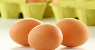 Het belangrijkste nadeel van eiwitten of proteïnen