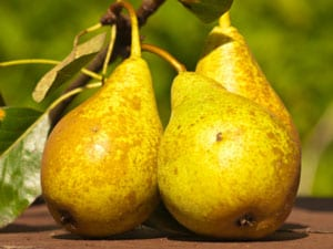 Gezond herfst-recept voor gebakken peren