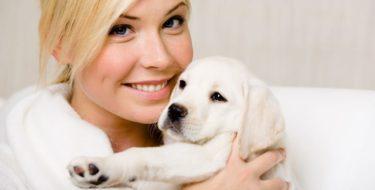 Hondenallergie: allergisch zijn voor honden, en dan?