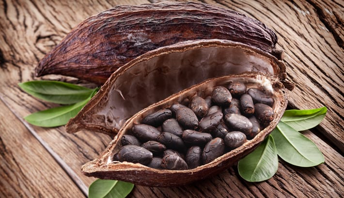 rauwe cacao pure chocola