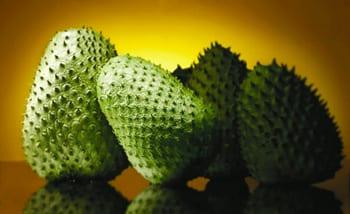 Graviola vrucht zuurzak kankerremmend of giftig for Nep fruit waar te koop
