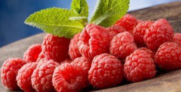 Raspberry Ketones: een afslankmiddel op advies van Dr. Oz