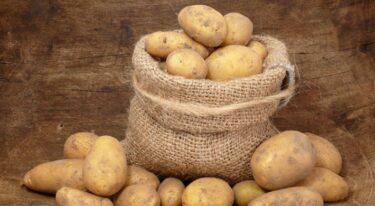 Aardappels in de schil eten… Of zijn aardappelschillen giftig?