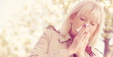 pollen allergenen plekken