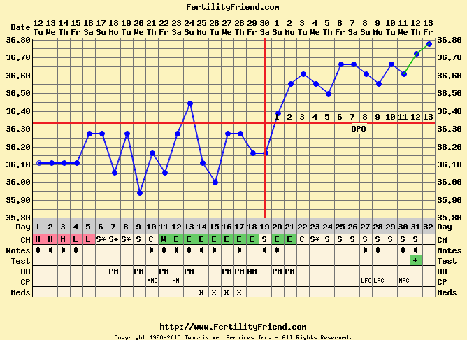 Voorbeeld temperatuurcurve bij zwangerschap